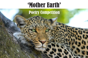 Poetry Competition Winner Announced!