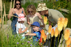 Nature Explorer - your passport to fun this summer at Wetlands
